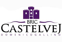 Bric Castelvej - Domenico Gallino