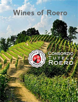 ebook wines of roero