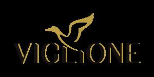 Logo Viglione