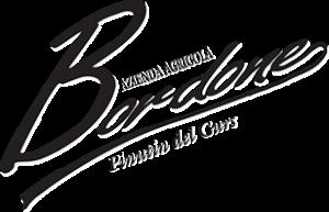 Logo Bordone