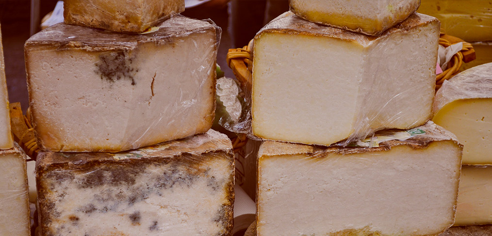 il formaggio castelmagno
