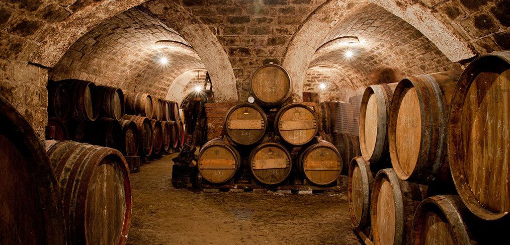 botti di legno per il vino